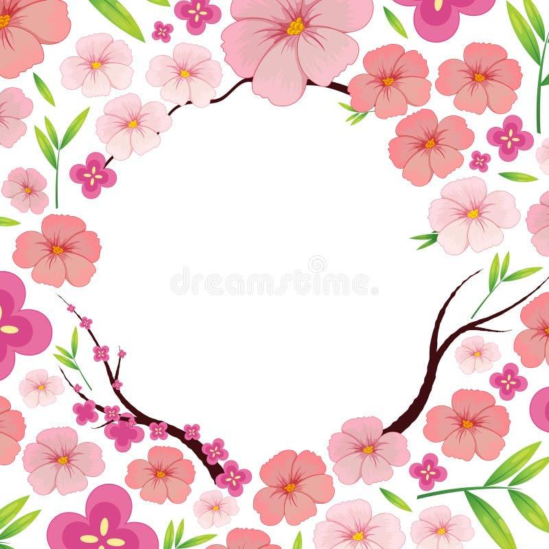 Asiatisk rosa japan Sakura Template vektor illustrationer