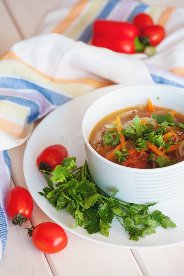 Asiatisk traditionell soppalagman med nudeln och kött royaltyfri bild