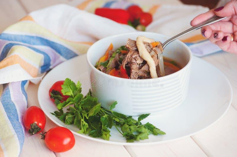 Asiatisk traditionell soppalagman med nudeln och kött fotografering för bildbyråer