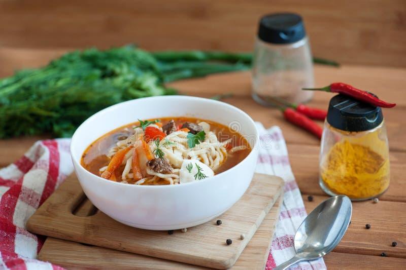 Asiatisk traditionell soppalagman med nudeln och kött royaltyfri fotografi