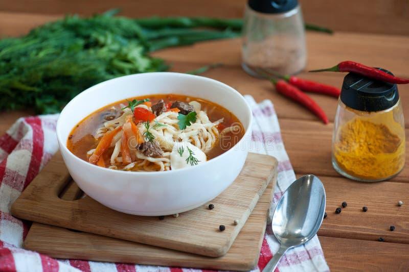 Asiatisk traditionell soppalagman med nudeln och kött arkivfoto