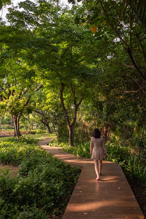 Asiatiska kvinnor går på träbroar royaltyfri fotografi