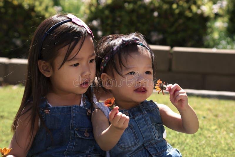 Asiatiska litet barnsystrar som spelar med blommor utomhus arkivbilder