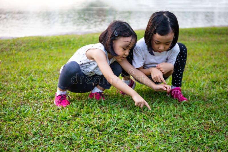 Asiatiska små kinesiska systrar som leker i parken arkivfoton