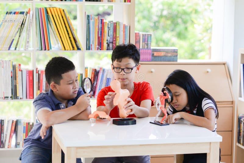 Asiatiska studenter och undervisar studiebiologiscicence i utomhus- klassrum royaltyfria foton