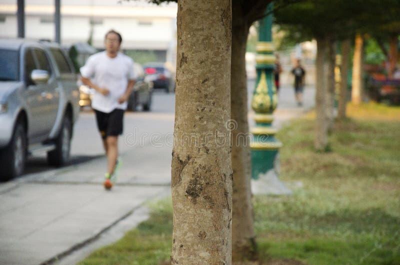 Asiatiskt jogga och övningen för thai folk körande i skymningtid på den offentliga trädgården parkerar i Nonthaburi, Thailand arkivbild