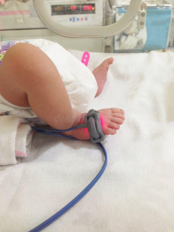 Asiatiskt nyfött behandla som ett barn av fot under den ultravioletta lampan i incubaen arkivfoton