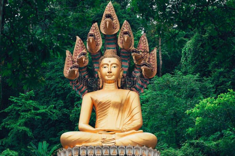 Asiatiskt thailändskt guld- Buddhasammanträde med den Naka ormen royaltyfri bild