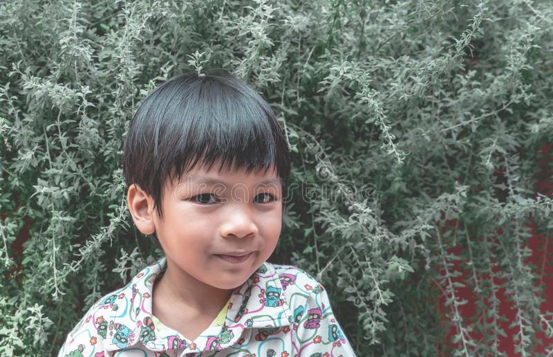 Asiatiskt ungeanseende i gräsplanträdgård royaltyfri bild
