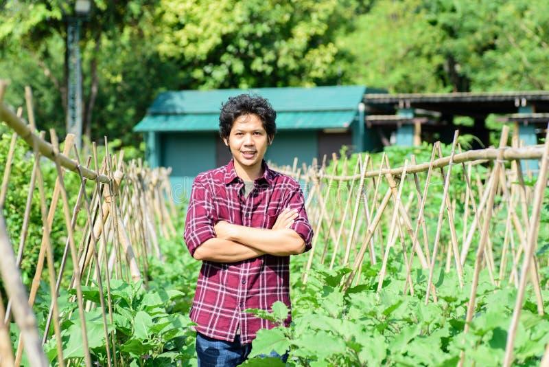 Asiatiskt ungt bondeanseende i grönsakträdgård arkivfoton
