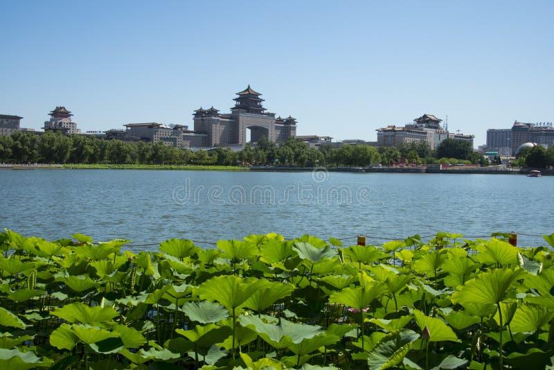 Asien Kina, Peking, lotusblommadammet parkerar, lotusblommadammet, västra järnvägsstation för Peking arkivfoton