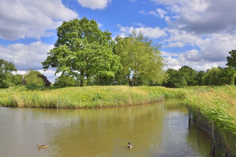 Asile de faune en parc de Londres du nord-ouest photographie stock libre de droits