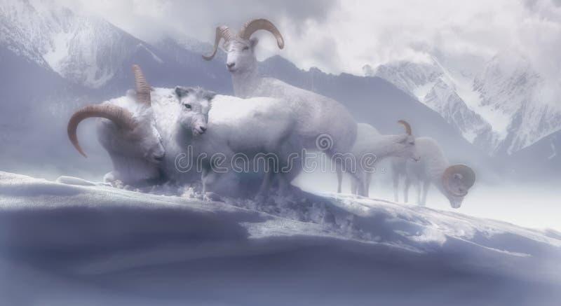 Asile de l'hiver photo libre de droits