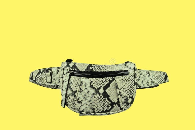 Askaen färgar piskar den utskrivavna stilfulla handväskan arkivbild