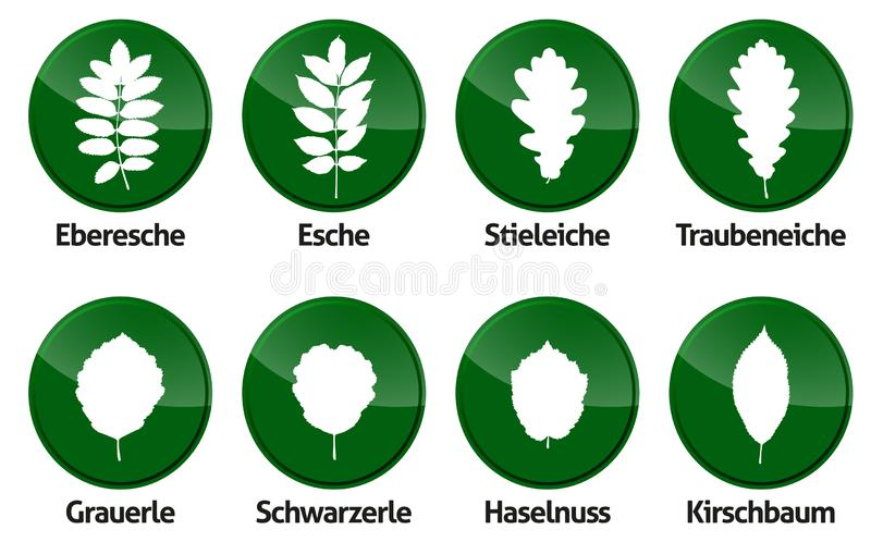 Askaen för skogen för översikten för bladlövverkvektorn isilated stock illustrationer