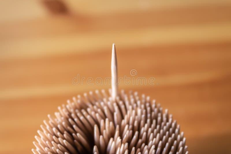Asken av trätandpetare med ett anseende ut fotografering för bildbyråer