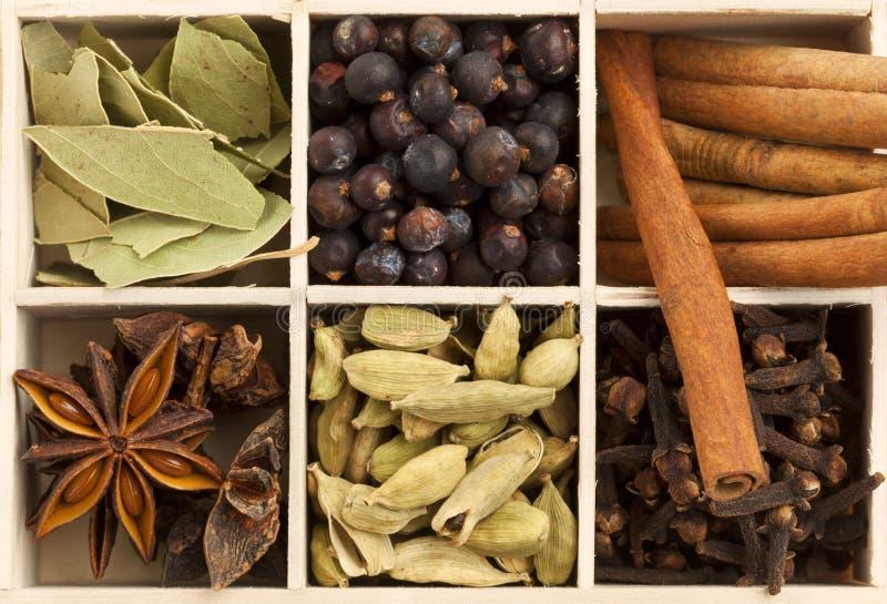 asken kryddar trävariation arkivfoto