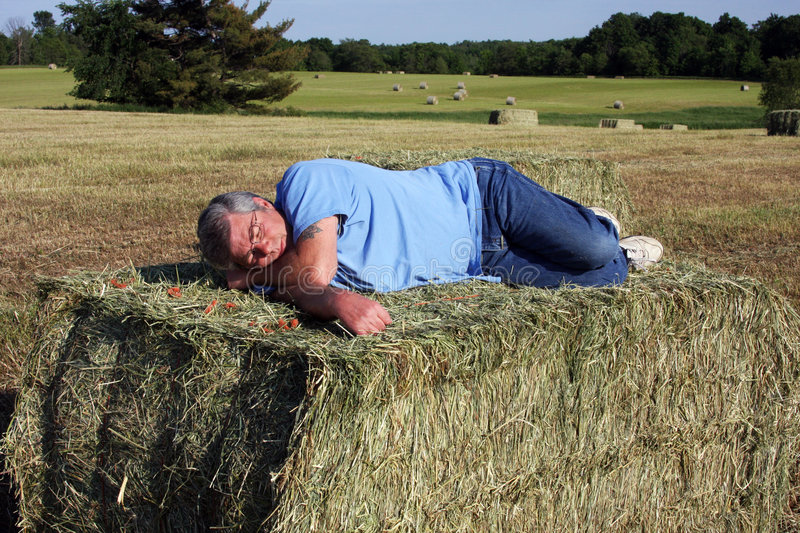 Asleep on the hay. Man asleep on a big bale of hay after harvesting the crop royalty free stock photos