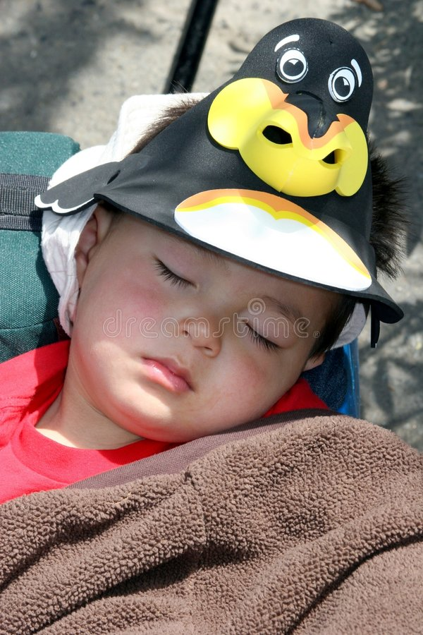 Asleep at the zoo. A little boy asleep from too much excitement at the zoo royalty free stock images