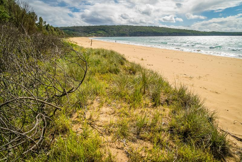 Aslings beach in Eden, New South Wales in the summer royalty free stock photos
