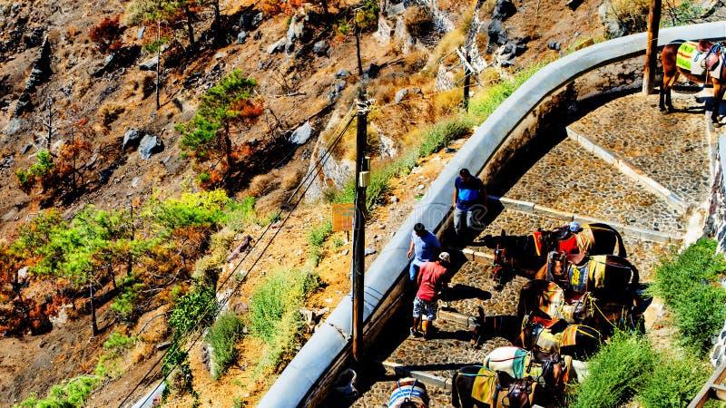 Asnos do transporte na ilha de Thera Santorini Oia em Grécia fotos de stock royalty free