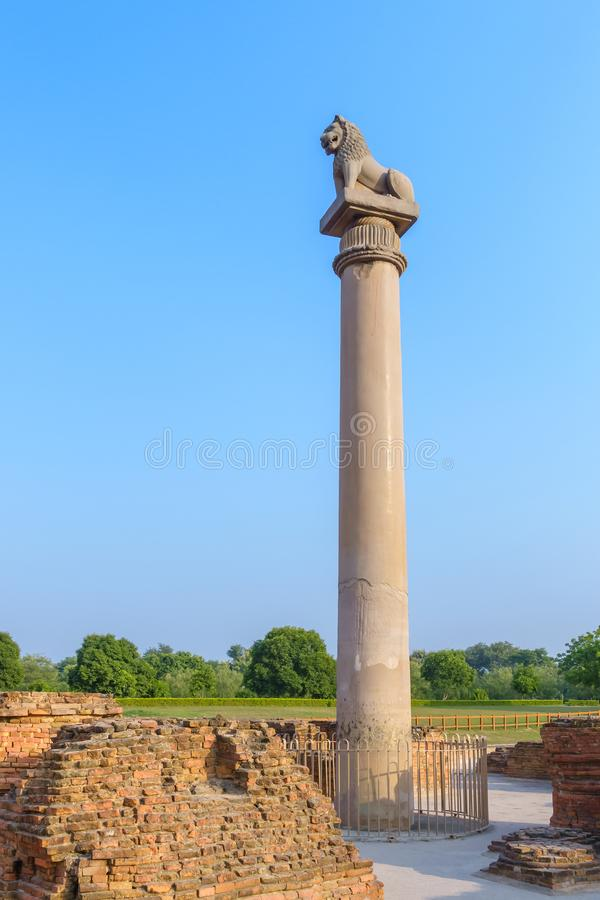 Asokan-Säule bei Kutagarasala Vihara, Vaishali, Bihar, Indien lizenzfreie stockfotografie