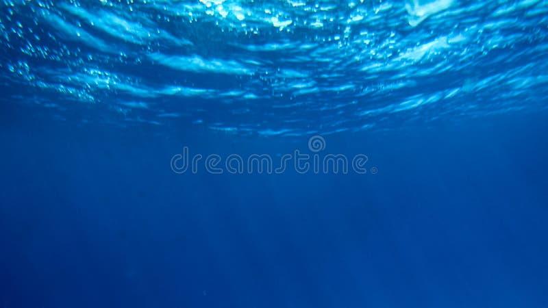 Asombroso bajo imagen del agua de pescados que nadan y de rayos brillantes del sol en la superficie del agua fotos de archivo libres de regalías