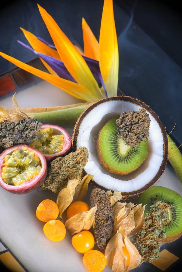Asortowana wysuszona marihuana pączkuje z świeżą tropikalną owoc - medyczną fotografia stock