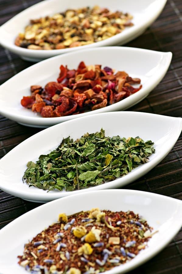 asortowani puchary suszą ziołowej herbaty wellness zdjęcie stock