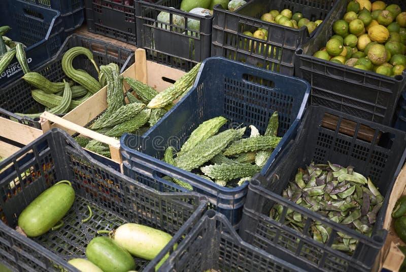 Asortowani warzywa sprzedający przy rynkiem zdjęcie stock