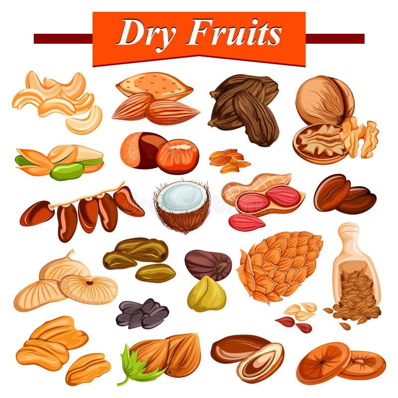 Asortowany suchy owocowy ustawiający wliczając cashewnut, migdału, rodzynki, figi i dokrętek, ilustracji