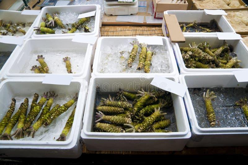 Asortowany wasabi zakorzenia na sprzedaży przy rynkiem zdjęcie stock