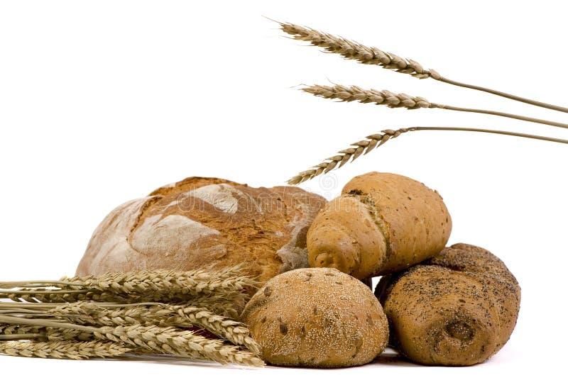 asortowanych odseparowana chlebów pszenicy obrazy royalty free
