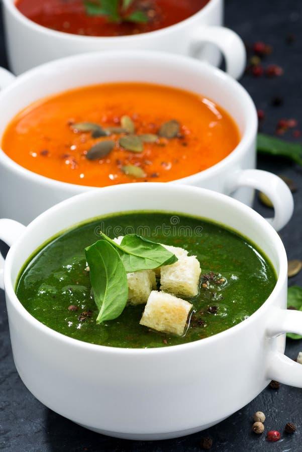 Asortyment świeżego warzywa kremowa polewka na czarnym tle fotografia stock