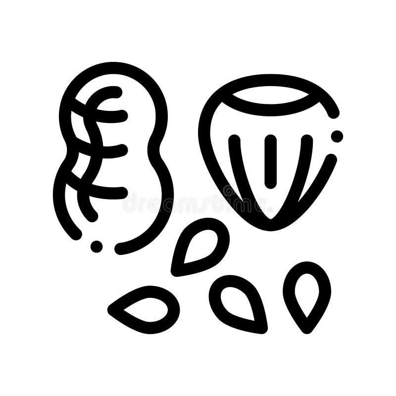 Asortyment dokrętek Zdrowego Karmowego wektoru Cienka Kreskowa ikona ilustracja wektor