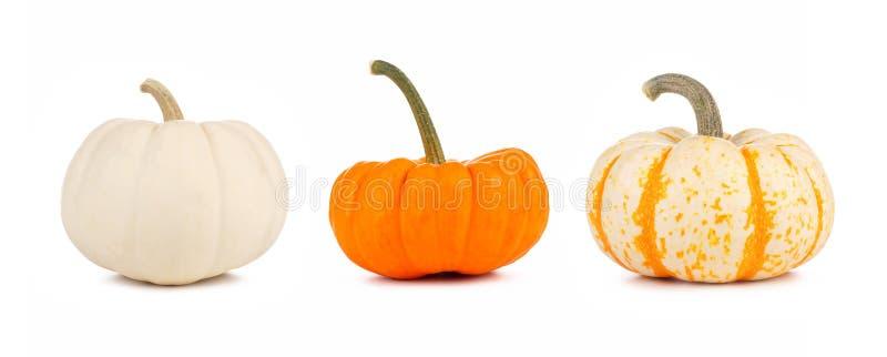 Asortyment jesieni banie, boczny widok odizolowywający na bielu obraz stock