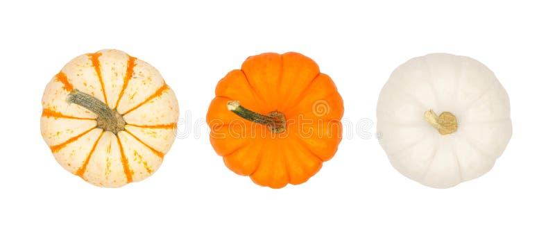 Asortyment jesieni banie, odgórny widok odizolowywający na bielu obraz stock
