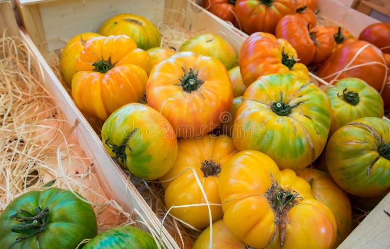 Asortyment różni organicznie świezi pomidory zdjęcie stock