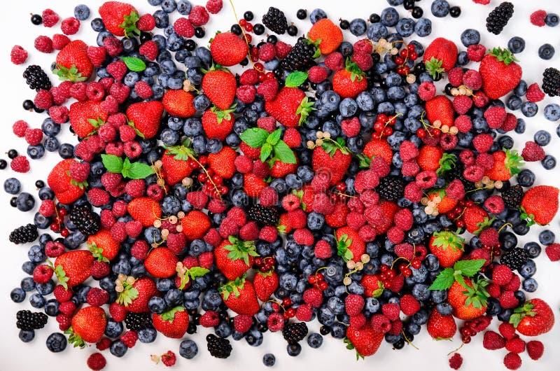 Asortyment truskawka, czarna jagoda, rodzynek, nowi liście Lato jagod tło z kopii przestrzenią dla twój teksta wierzchołek obrazy royalty free