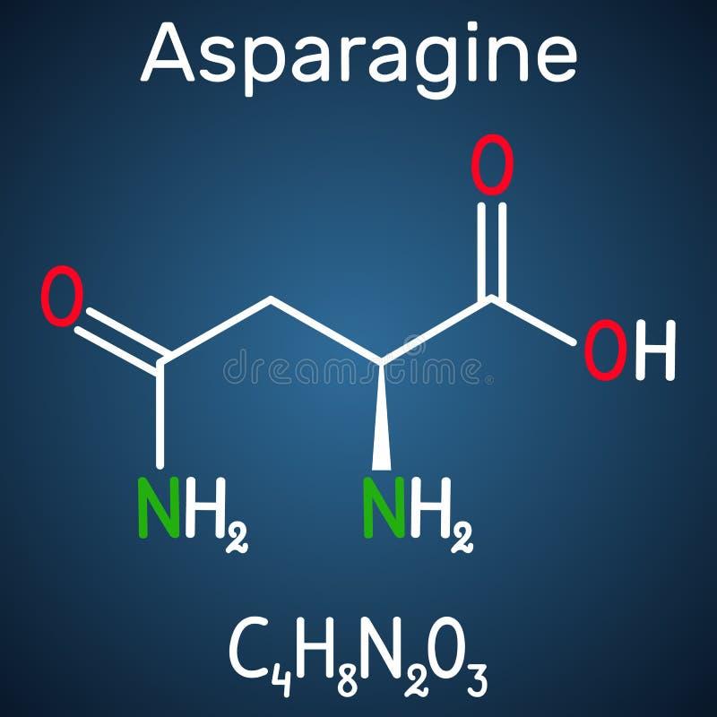 Asparaginy asparagina, Asn, N amino zjadliwa molekuła Ja jest używa w biosyntezie proteiny Formalnie substancja chemiczna ilustracja wektor