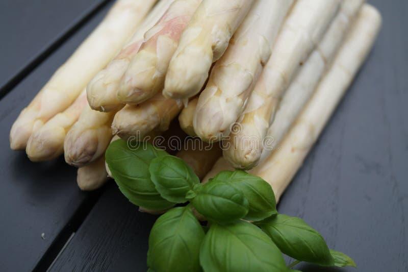Asparago bianco fresco fotografie stock