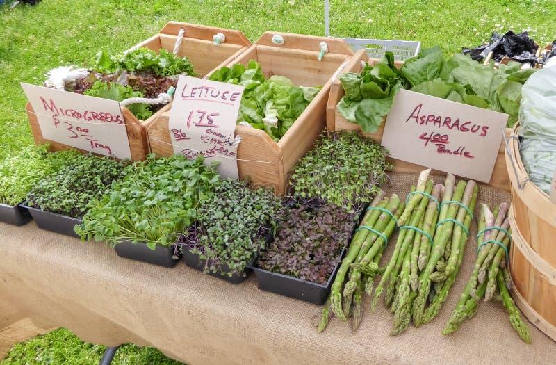 Asparago e verdi al mercato all'aperto fotografia stock libera da diritti