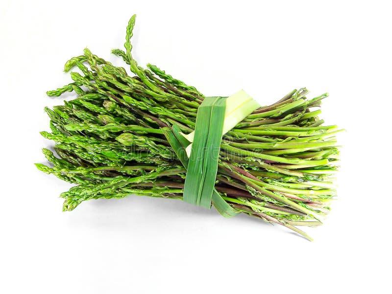 Asparago selvaggio (asparago Acutifolius) immagine stock libera da diritti