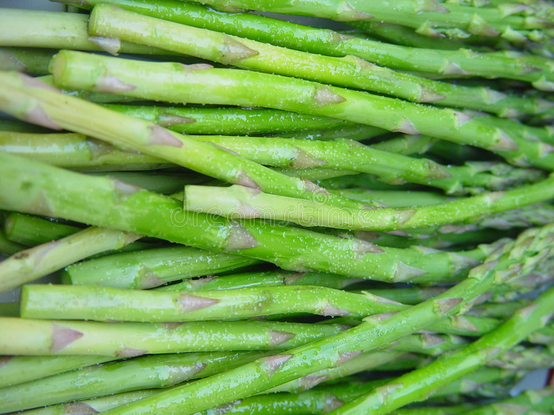 Download Asparagus stock image. Image of ingredient, lunch, vegetable - 747