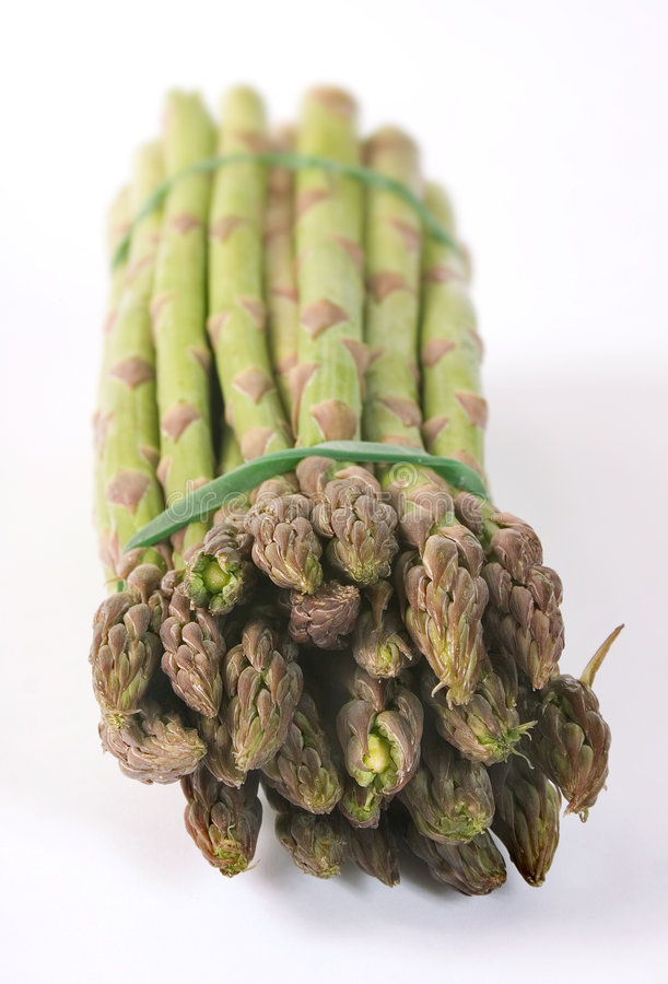 Download Asparagus stock photo. Image of greenery, fresh, salad - 119640
