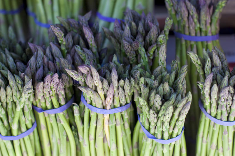 Asparagus. Separate bunches of asparagus wrapped in purple rubber bands in a farmers market royalty free stock image