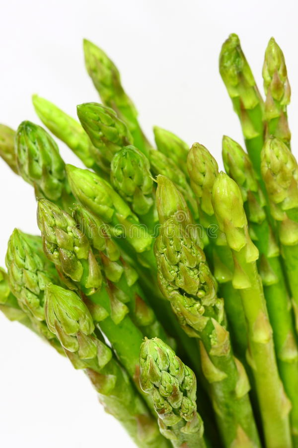 Asparagus. Tips on isolated white background stock image