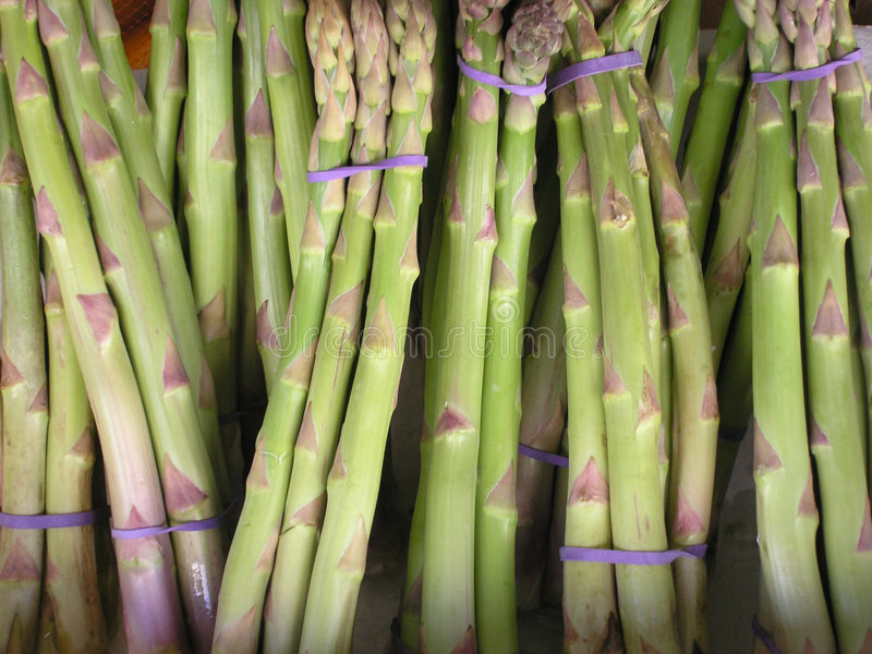 Download Asparagus stock photo. Image of fresh, vegetarian, green - 19526