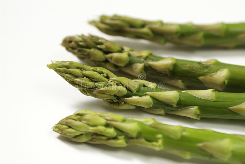 Download Asparagus stock photo. Image of green, orchard, asparagus - 455488