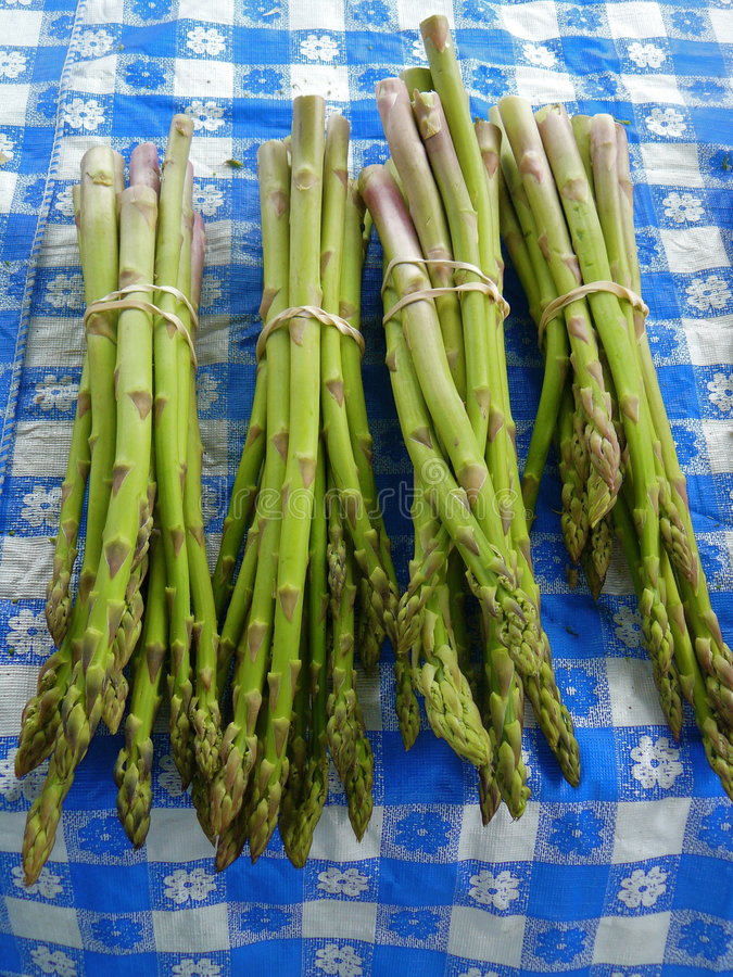 Free Asparagus Royalty Free Stock Photography - 5401477